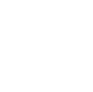 neil diamondmemories